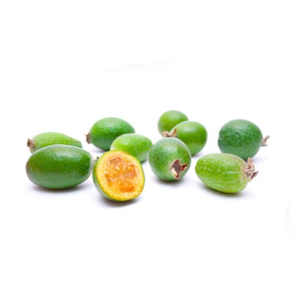 31366-fruit